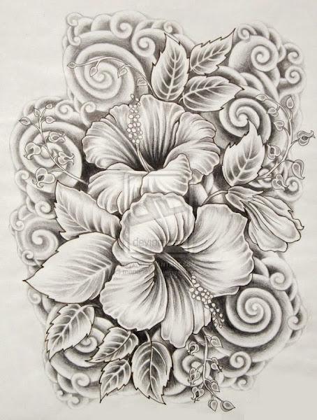 Hibiscus Flower Drawings